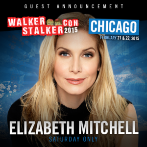 Walker Stalker Con feb chicago